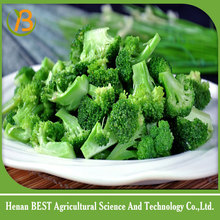 product specification for white broccoli