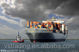 Quick cheap Shanghai sea freight / Ocean freight / sea shipping to USA