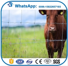 Multifunctional iso chian link fence used horse fence panels for sale