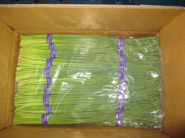 10kg Carton of Fresh Garlic Sprout