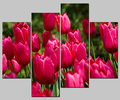 custom canvas print 4pcs tulip flower canvas wall art print canvas art wholesale
