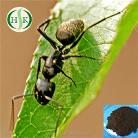 Black Ant Sex Pills Natural Black Ant Powder