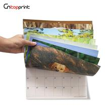 Premium Paper Sheets Glossy Dog Photo Wall Mounted Calendar 2020