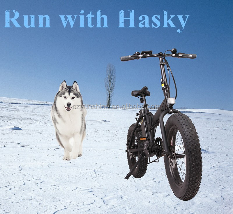 Hasky fat tyre, Small mountain electric bike, Pit mini electric dirt bike