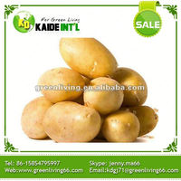 Jining Potato Purchase Specification