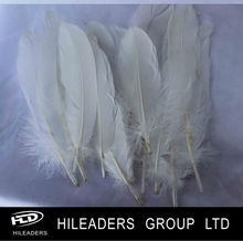 Wholesale Dyed Artificial Goose Feather