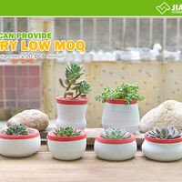 Flowerpot Cement Garden Flower Pot
