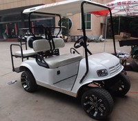 3000W 4 seater high-powered electric farm vehicle utility cars