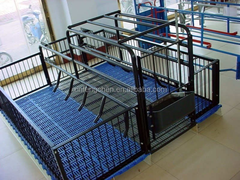 Design galvanized farrowing pen for pigs