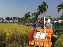 Mini Rice wheat harvesting machine price