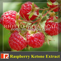 GMP standard factory supply Nature pure Raspberry Ketone Extract 98%, 99%