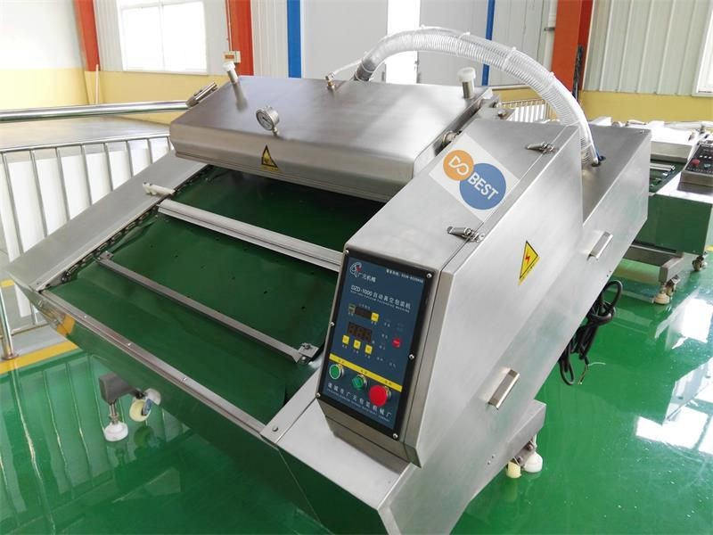 fresh fish beef steak vacuum packing machine,double chamber vacuum packing machine ,food vacuum packaging machine