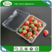 Plastic Fruit Punnet Fruit Packaging Box