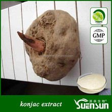 GMP factory hot sell konjac extract konjac glucomannan flour
