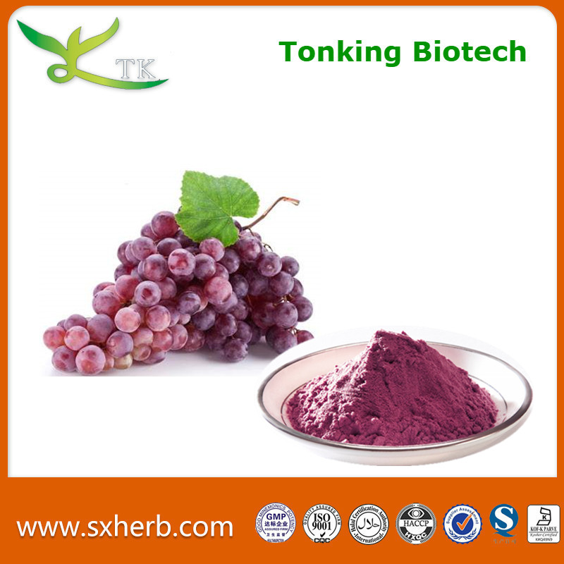 Tonking Offer Grape Seed Extract Vitis Vinifera Extract Polyphenols Grape Extract