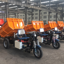 Prominent durable famous brand Adult electric tricycle for cargo