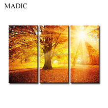 Modern Canvas Art Painting 3 Panel Giclee Prints Big Tree of Life in Sunshine Natural Scenery Printed Oil Painting Pictures