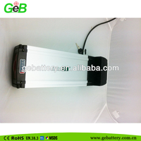 48v 1000w electric bike battery 48V 20AH for electric bicycle