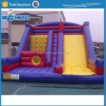 Inflatable Slide with Climbing