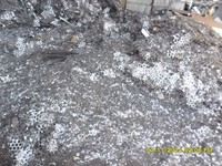 Tin scrap prices Tin Coated New Cuttings available for sale scrap dealers