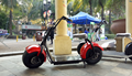 2 wheel electric scooter Adult electric scooter with fat tire