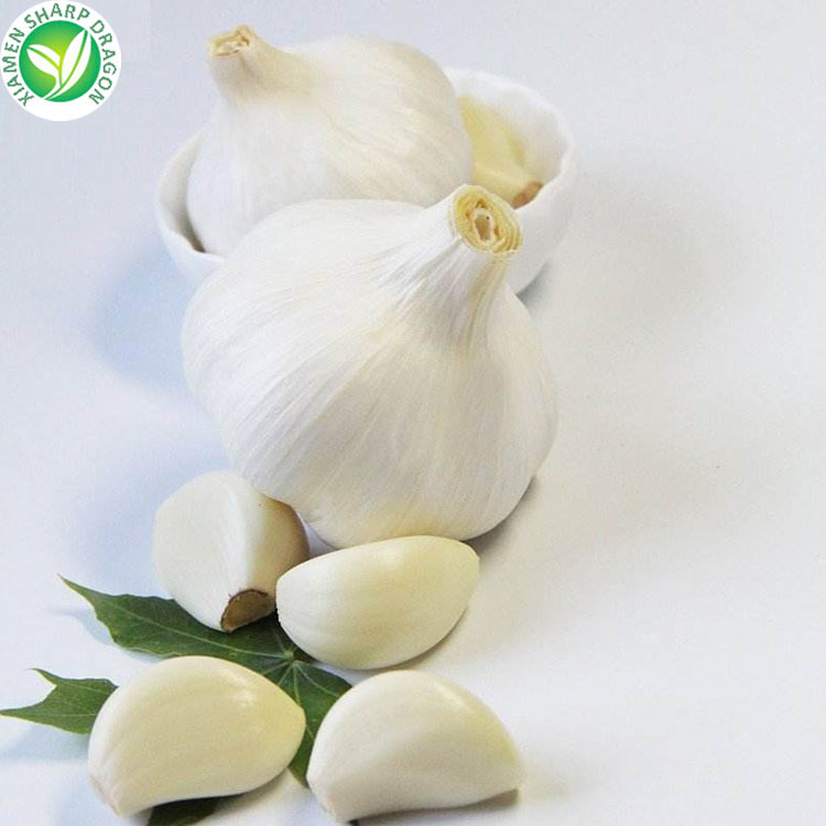organic 10kg packing garlic fresh snow white garlic