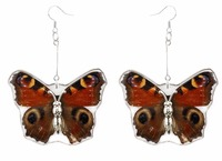 Hot sale New design beautiful REAL butterfly wings big fashion earring for women