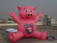 6m Giant Inflatable Pig Balloons Sale to Germany