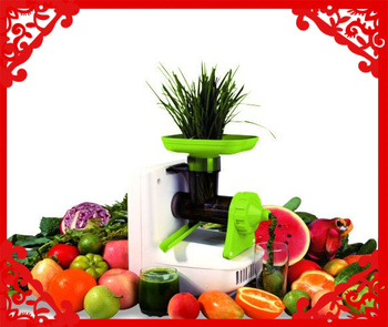 2014 most advanced wheatgrass juicer/low speed juicer