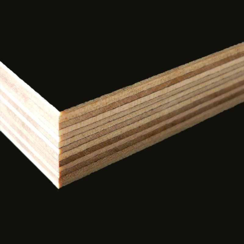 Termites resistant plywood manufacturer/18mm film faced playwood