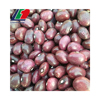 Light Speckled Kidney Beans Long/Round Shape White Kidney Beans, Purple Kidney Beans, Yellow Kidney Beans