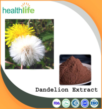 Nature Factory Supply Pure Taraxacum Dandelion Extract, Dandelion Root Extract Powder, Flavonoids