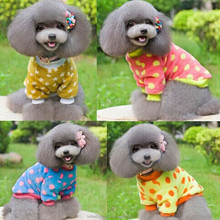 Approved polyester dog clothes knitting pattern pet accessories