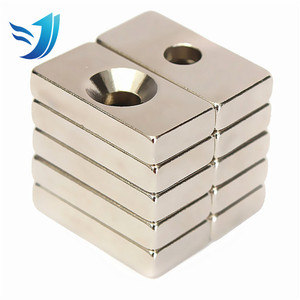 Customized Manufacture Price NeFeB Special Shape Magnet