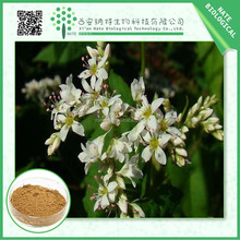 Free sample pure natural Tartary Buckwheat Extract 80% Flavones