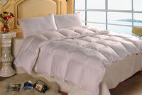 Certain Percent Down And Feather Comforters Beddings Duvets