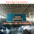 2000 pieces paper egg tray making machines-egg tray forming machinery-mobile/Whatsapp:0086-15153504975