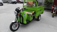 2016 China 1000W Safe Power Electric Rickshaw heavey load cargo adult tricycle With CE