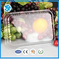 Many Kinds Of Fancy Pet Blister Divided Trays Plastic Food Tray With Lids