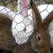 High Quality Rabbit Cage Welded Wire Mesh