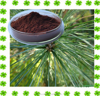 Anti-aging Pine Needle Extract