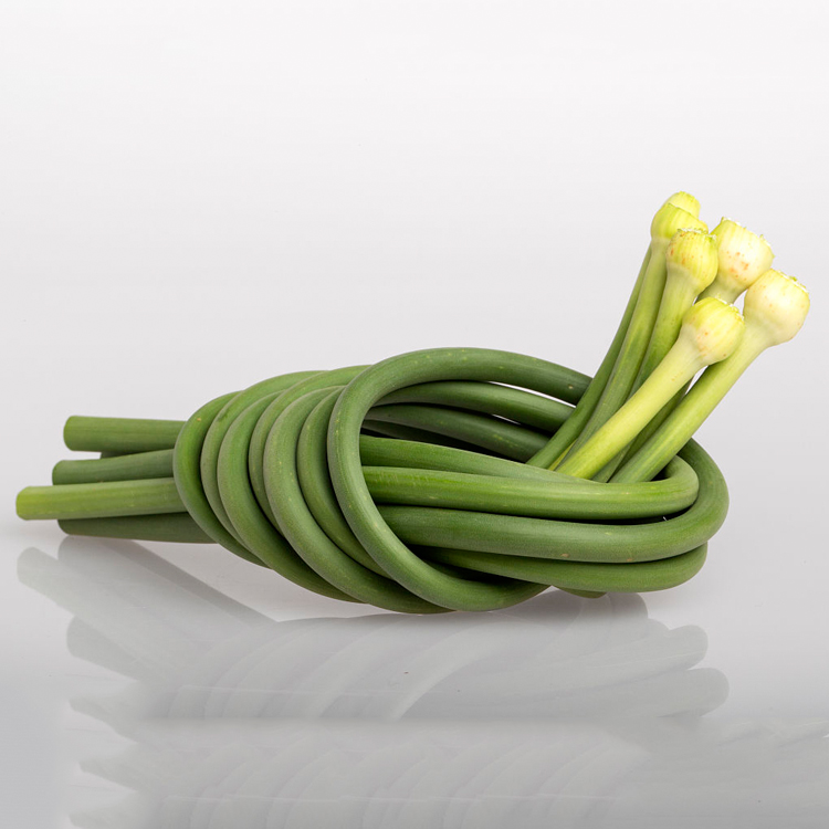 Most Popular Green Fresh Garlic Sprout