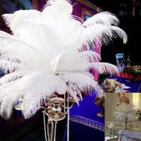 Wholesale party&wedding dress Size 70-75cm Dyed Colorful White carnival ostrich feather centerpiece