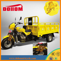 2014 new product Battery Powered Auto Rickshaw