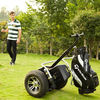 Environmental cheap self balance electric golf pull cart wheels with golf bag carrier