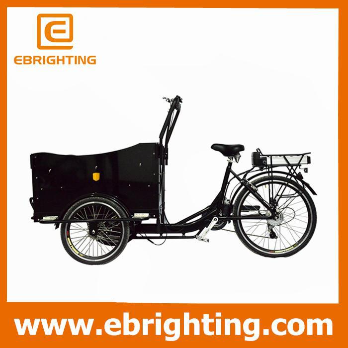 charging 5 hours pedal mini gas powered tricycle for sale in philippines for adult