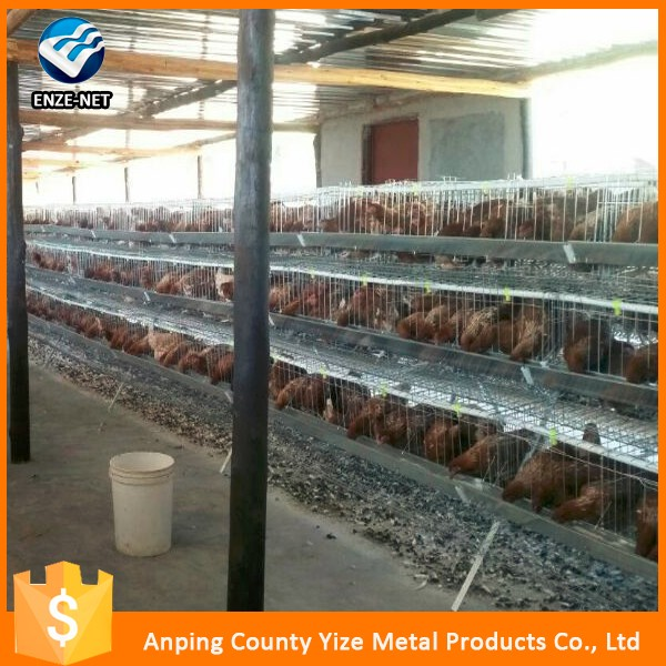 Poultry farming equipment cheap chicken coops/chicken farm automatic design layer chicken cages for sale