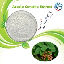 100% Natural Acacia Catechu Extract Powder