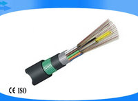 fiber optical cable (GYTA53)