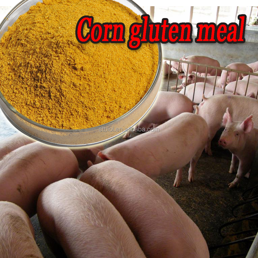 Quality-Assured Yellow Powder Corn Gluten Meal